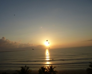 Sunrise with birds Tucacas Venezuela