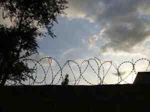 Barbed Wire Langata Kenya