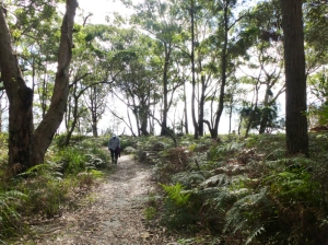 Jim hiking at Boodoree National Park