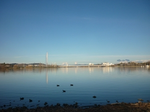 Lake Burley Griffin, Canberra Australia
